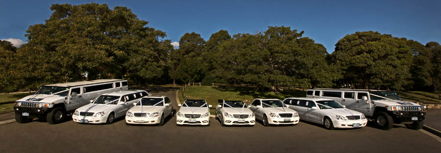 hens night limousines sydney - sydney bucks night limousine hire - kids limousine parties sydney