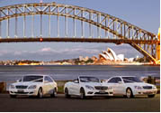 sydney bucks nights - sydney airport transfers